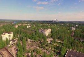 Tísnivá pustina po katastrofě ožívá, okolí jaderné elektrárny v Černobylu je…