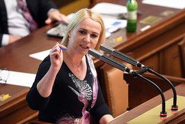 Vláda schválila novelu zákona o zbraních kvůli směrnici EU. ODS je proti i za cenu …