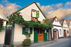 Hajósi Pincék je malým rájem pro milovníky vína. Najdete zde více než tisíc vinných sklepů