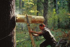 Kolot je obrovské dřevěné kladivo s lanem