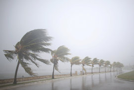 Hurikán Irma dnes dorazil na Floridu