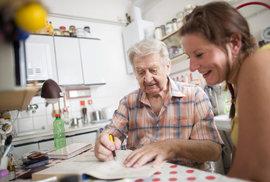 paliativní péče, domácí hospic