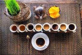 Pojďme zbořit mýty o kávě. Cévám vysoká spotřeba kávy neškodí, tvrdí přelomová studie