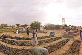 Zelená Sahara ve virtuální realitě