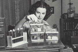 Nejkrásnější žena světa a vynálezkyně Hedy Lamarr