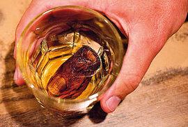 Kulturní dědictví kanadského Yukonu: Ochutnejte amputovaný lidský prst ve sklence alkoholu