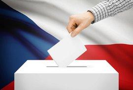 Rozhodnou u nás volby cizinci? Můžeme si do Europarlamentu zvolit Malťana nebo…