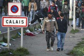 Český kamioňák dostal ve Francii dva roky za převoz migrantů, o kterých možná ani nevěděl
