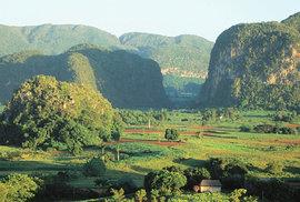 Fenomén jménem Kuba: Voňavý tabák mezi sloními hřbety