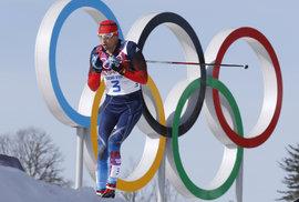 Na olympiádu jedou prezidenti Německa, Polska, Slovenska a další politici. Proč…
