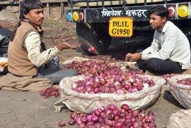 Indický Ázádpur Mandí: Obří trh, který nikdy nespí