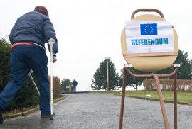 Přehledně o obecném referendu v ČR: Co která strana navrhuje a co by to znamenalo