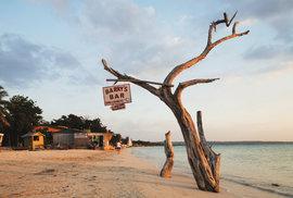 Za poznáním slastí i strastí Jamajky: Kokain, rum i chlebovník