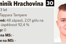 Dominik Hrachovina