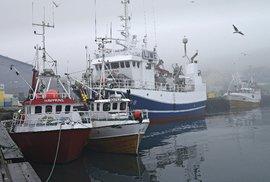 Pro ty, kdo jsou ochotni tvrdě a těžce pracovat, je na severu Norska stále dost pracovních příležitostí za dobrý výdělek (přístav Berlevag)
