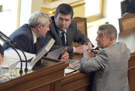 ČSSD jde do vlády s Babišem, na podzim ji ale čeká další výprask ve volbách