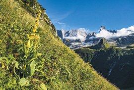 Působivé panoráma parku Vanoise svrcholy Grande Casse aGrand Bec