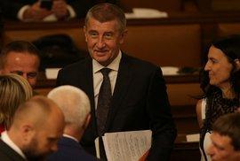 Česko má vládu s podporou komunistů. Babišův kabinet si v noci prohlasoval důvěru. Pro byl Stropnický i Šlechtová