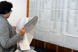 Jak se volí v komunálních volbách? Velké křížky stranám a malé křížky lidem napříč kandidátkami