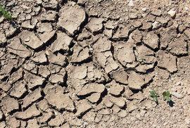 Současnými přístupy krajinu zcela dobrovolně oteplujeme aodvodňujeme sami, například prostřednictvím nepřerušovaných rozsáhlých ploch polí