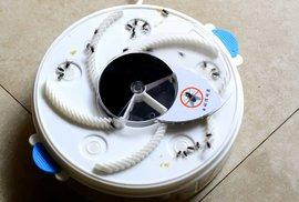 Parádní vychytávka: Novodobou mucholapku připojíte do USB a pochytáte všechny otravné mouchy
