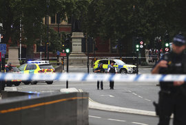 Incident před britským parlamentem