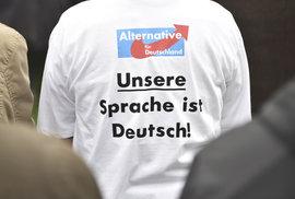 Alternativa pro Německo posiluje. Předstihla socialisty a je druhou nejpopulárnější stranou v zemi