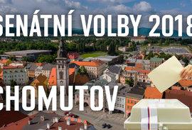 Senátní volby: Rudý obvod Chomutov může mít senátorku z ANO. Kandiduje i romský duchovní učitel žijící v Británii