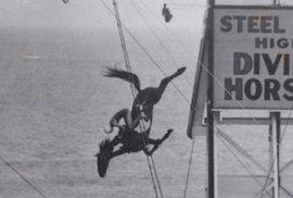 Bizarní a smrtící zábava: Dívky skáčou na koni z výšky do vody a společně se potápí