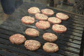 Aktivisté prosadili v Evropě zákaz konzumace masa ze zvířat, které projevují inteligenci a emoce