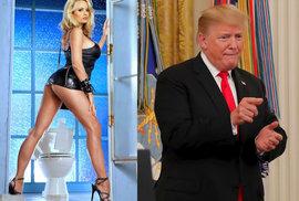 Pornoherečka, která tvrdí, že spala s Donaldem Trumpem, vydává paměti.
