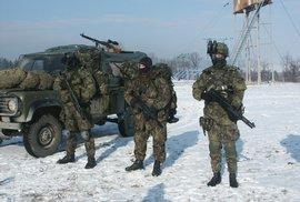 Česká republika je v NATO už 20 let. Jak se za tu dobu změnila česká armáda?