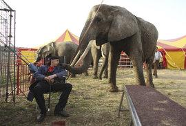 Den otevřených dveří v českých cirkusech. Přijďte se podívat, jak se (ne)trápí zvířata, uvidíte i trénink