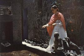 Poslední dva roky života Fridy Kahlo