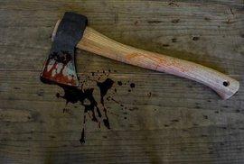 Perverzní matka nechala zabít dospělého syna. Vraha prozradilo, jak se dloubal v nose