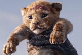 Lví král má problém: Petice viní Disneyho z kolonialismu a vykrádání kvůli sloganu Hakuna matata