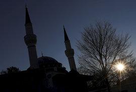Německo si podmanil homosexuální transgender muslimský imigrant