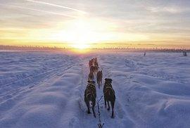 Severská vášeň jménem mushing aneb Se psím spřežením po sněhových pláních Aljašky