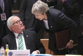Průzkum: Britové věří premiérce Mayové. Lepší dohodu o Brexitu nikdo nevyjedná, myslí si většina