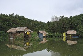 Fernando nás vzal do osady těžařů. Nad hladinou stály na kůlech jejich chatky.