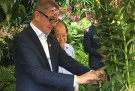 Po Babišovi pojmenovali v Singapuru orchidej. Jmenuje se Bureš