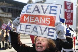 Brexit vnesl do britské sněmovny zmatek. Kdo teď drží trumfy? A proč je tak důležitá irská pojistka?
