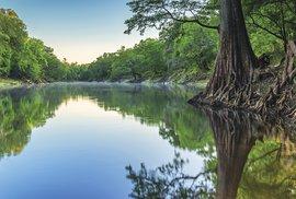 Přírodní ráj jménem Ocala National Forest aneb K pramenům mládí nasever Floridy