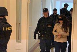 Rakousko propustilo Iráčany, zadržené v Česku pro podezření z terorismu