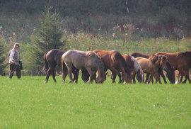 Drsná krása Slovenského rudohoří aneb Za divokými koňmi na Muráňskou planinu