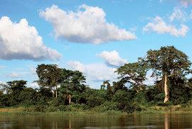 Dobrodružství na řece Sangha aneb Ze Středoafrické republiky do Konga na nafukovacím člunu
