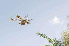 Drony budou ve Finsku doručovat masové kuličky i limonády