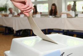 Jak se volí ve volbách do Evropského parlamentu? Vybrat jediný lístek a kroužkovat…