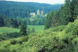 Přírodní rezervace Údolí Brtnice: Načerpejte energii v nejmladším chráněném území na…