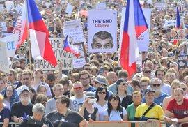 Babiš se má omluvit za výroky o zaplacených protivládních demonstrantech, rozhodl soud. Premiér se odvolá